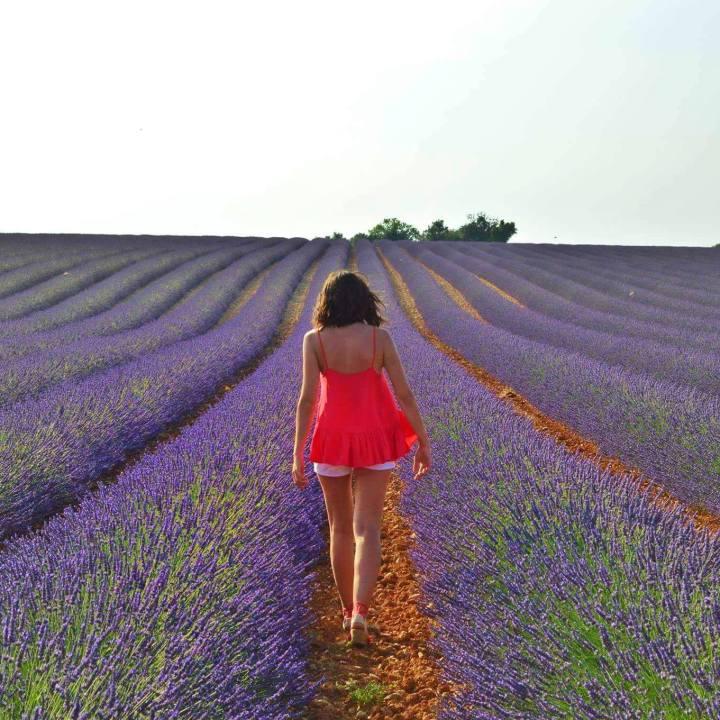 Road Trip dans le sud des Alpes deHaute-Provence